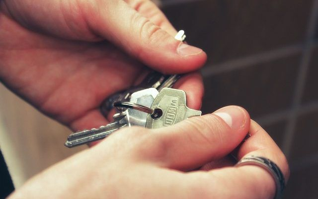reforma ley arrendamientos